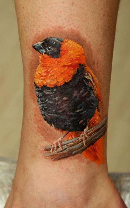 tattoos/ - African Bird - 63851